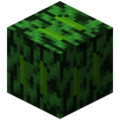 Block Alder Leaves.png